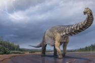 «Αυστραλοτιτάν» - Ο δεινόσαυρος που είχε μήκος όσο ένα γήπεδο μπάσκετ