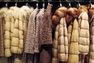 Ισραήλ - Η πρώτη χώρα που απαγορεύει το εμπόριο γούνας ζώων για τη μόδα