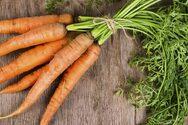 Tips για να κρατήσετε τα καρότα φρέσκα