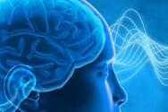Τα μυστικά για να ενδυναμώσουμε τον εγκέφαλο