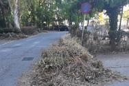 Πάτρα: Περιμένοντας τον κλαδοθρυματιστή για τα κλαδιά και τα «πράσινα» απόβλητα