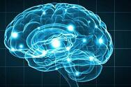 Η Νο1 συνήθεια για ισχυρό εγκέφαλο