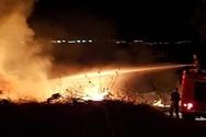 Πάτρα: Πυρκαγιά σε κτήμα με ελιές προκάλεσε αναστάτωση