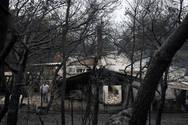 Πυρκαγιές: Στάχτες έκταση ίση με την Πελοπόννησο και την Αττική σε 41 χρόνια