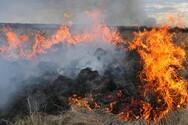 Ζάκυνθος - Φωτιά στην περιοχή Νερατζούλες
