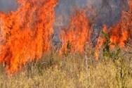 Μεγάλη φωτιά στο Αραχναίο Αργολίδας