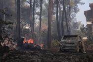 Χαρδαλιάς για φωτιά σε Σταμάτα και Ροδόπολη: Παραμένουν πολλές διάσπαρτες εστίες - Τέσσερις προσαγωγές