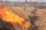 Πάτρα: Φωτιά στην Ελεκύστρα - Καίγονται ξεροχορτα