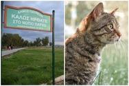 Πάτρα: Η πρώτη προφυλάκιση για δολοφονία ζώου