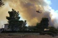 Πυρκαγιά στη Ζήρια - Πανικός με τους λουόμενους στην παλαιά εθνική οδό