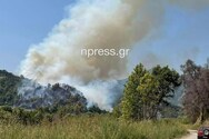 Μεγάλη φωτιά στο Παραδείσι Αιτωλοακαρνανίας (video)