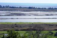 Ελληνική Λύση: Μερικός επαναπλημμυρισμός της πρώην λίμνης Μουριάς στην Ηλεία