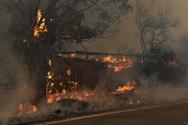 Αιγιάλεια: Άτομο έχει ομολογήσει την ευθύνη του για τη φωτιά στη Ζήρια
