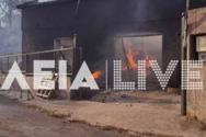 Φωτιά στη Γορτυνία: Καίγονται σπίτια στο χωριό Πυρρή (φωτο)