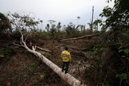 Σε αριθμό-ρεκόρ οι δολοφονίες ακτιβιστών του περιβάλλοντος το 2020