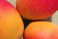Αυτές οι τροφές βοηθούν να κρατήσουμε το μαύρισμά μας περισσότερο