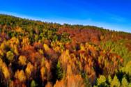 Φθινοπωρινή ισημερία: Ξεκινά και τυπικά το φθινόπωρο το βράδυ της Τετάρτης