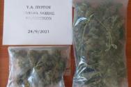 Δυτική Ελλάδα: Tον τσάκωσαν να καλλιεργεί ναρκωτικά (φωτο)