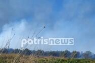 Δυτική Ελλάδα: Φωτιά σε Δουνέικα και Σαβάλια