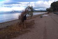 Πάτρα: Στέκι σκηνιτών το πάρκο στην παραλία των Ιτεών (φωτο)