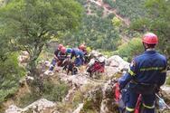 Αχαΐα: Επιχείρηση διάσωσης κατσίκας από την 6η ΕΜΑΚ και την Πυροσβεστική