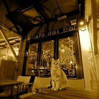 Del Bar Cafe