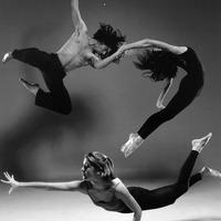 Dancarte Τατιάνα Λοβέρδου Σχολές χορού