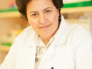 Αθηνά Τραχήλη: «Ο Τουρισμός Υγείας έχει μέλλον στην Αχαΐα»