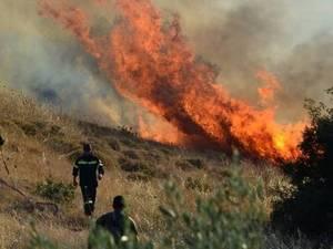 Πυρκαγιά καίει δασική περιοχή στην Άρτα