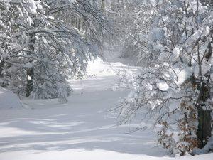 Έρχεται «λευκή» Πρωτοχρονιά!