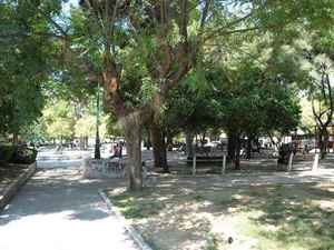 Πάτρα: Τοξικομανείς παίζουν τις μπουνιές κάθε τόσο στο κέντρο της πλατείας Όλγας!