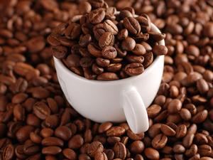 Το 60% των ειδών του καφέ στη φύση κινδυνεύουν με εξαφάνιση
