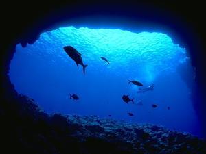 Οι ωκεανοί θερμαίνονται 40% ταχύτερα