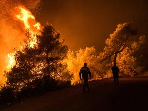 Εμπρησμό κατά 99% δείχνουν τα στοιχεία για τη φωτιά στην Εύβοια