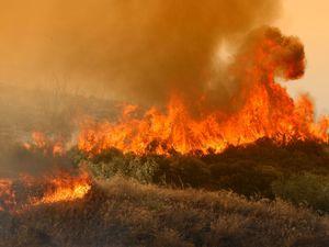 Πολύ υψηλός ο κίνδυνος πυρκαγιάς το Σάββατο σε περιοχές της Αχαΐας και Ηλείας