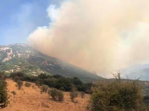 Καλάβρυτα: Πυρκαγιά στο χωριό Μουρίκι