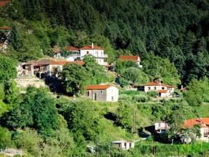 Ζαρούχλα - Ένας επίγειος παράδεισος κρυμμένος στις πλαγιές του Χελμού (pics)