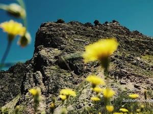 Σαλμενίκο Αχαΐας - Η ιστορία του Κάστρου, που χτίστηκε πάνω σε έναν απόκρημνο λόφο (video)