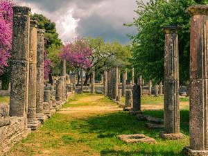 Ταξίδι στην 'Κοιλάδα των θεών', στη γη της Αρχαίας Ολυμπίας!
