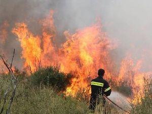 Αύξηση σημείωσε ο αριθμός των πυρκαγιών στη Δυτική Ελλάδα