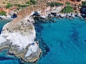 Το μοναδικό απολιθωμένο φοινικόδασος της Ευρώπης στο νότιο άκρο της Πελοποννήσου (video)