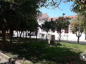 Πάτρα - Μια βόλτα στο αίθριο του Παλαιού Δημοτικού Νοσοκομείου (φωτο)