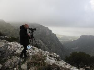 Οι γύπες του Αρακύνθου υπό δορυφορική παρακολούθηση: Από το Μεσολόγγι στην Κροατία!
