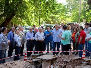 Δάσος Κεφαλόβρυσου Πάτρας: Ανεστάλη προσωρινά η κοπή των δέντρων (φωτο)