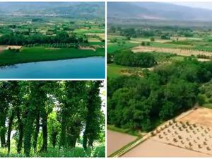 Φράξος - Εξερεύνηση στο ξεχωριστό, παραλίμνιο δάσος της Αιτωλοακαρνανίας (video)