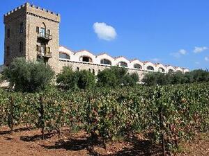 Πάτρα: Καλά κρασιά... όμως η πανδημία έριξε τη ζήτηση -  Ζημιά για τον κλάδο το 24%