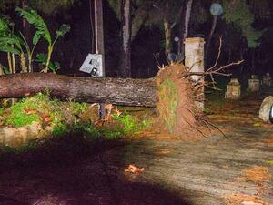 Εικόνες καταστροφής στην Ηλεία από την κακοκαιρία - Χωρίς ρεύμα αρκετές περιοχές