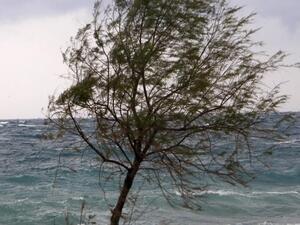 Δυτική Αχαΐα - Κακοκαιρία 'Ιανός': Οι ριπές του ανέμου ξεπέρασαν τα 80 χλμ/ώρα