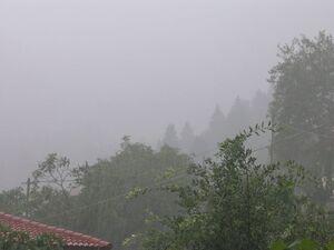 Ο κυκλώνας «μαστίγωσε» και τα χωριά στα βουνά της Αχαΐας και της Ηλείας (φωτο)