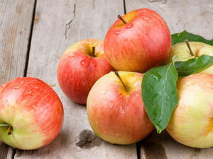 Μήλα - Πέντε λόγοι για να τα προτιμήσετε